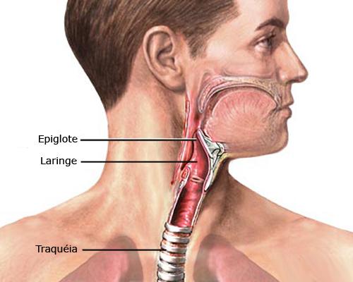 cancer faringe laringe sintomas