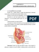 Cancerul de prostata: cea mai frecventa afectiune maligna a barbatului
