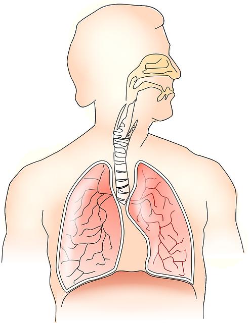 cancer pulmonar biodescodificacion