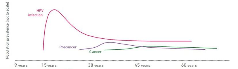 risk of cervical cancer without hpv cancer pulmonar ultimele stadiu