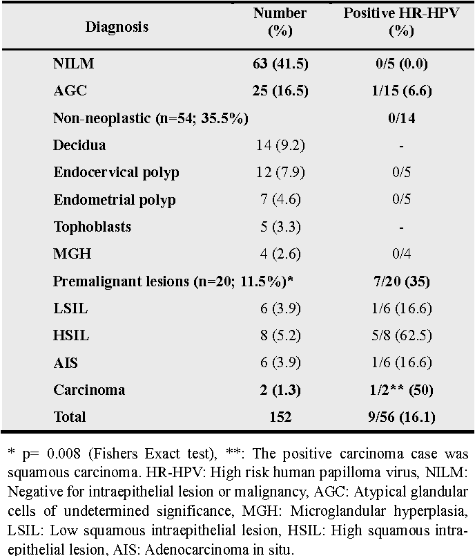 hpv high risk pregnancy