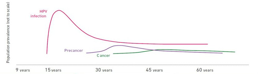 hpv virus uterus cancer tricou parazitii 20 cm records