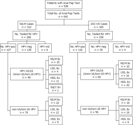 HPV ADN-detecţie tipuri cu risc crescut + genotipare 16, 18 (cobas® HPV) | Synevo
