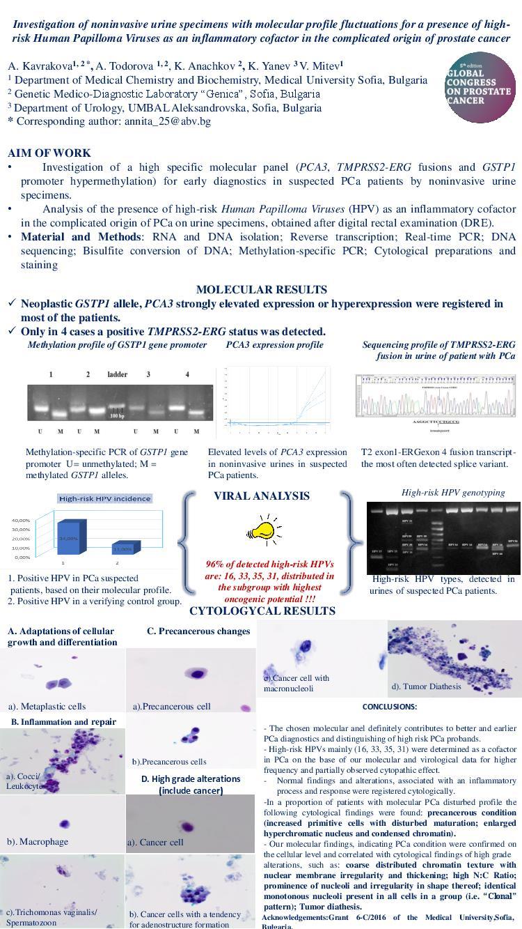 hpv high-risk male urine molecular testing labs virus del papiloma humano en mujeres tipo 16