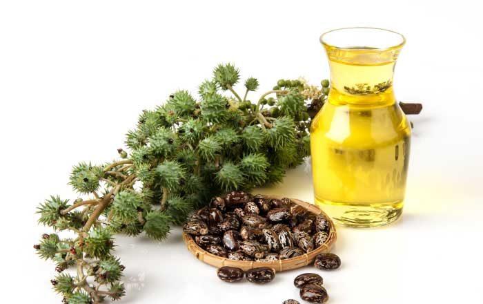 Remedii eficiente contra paraziţilor intestinali