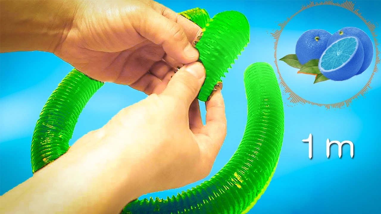 virus del papiloma humano familia y genero