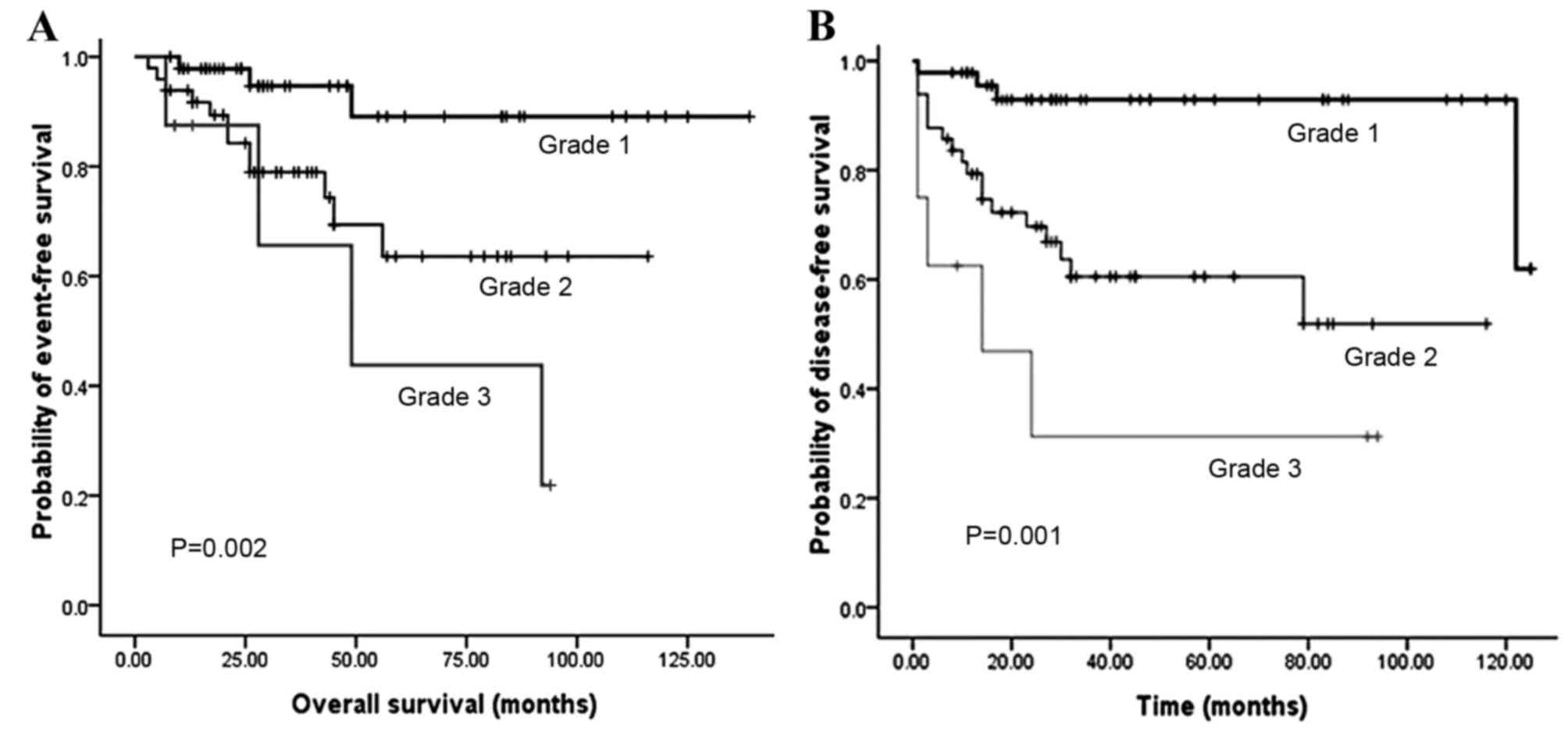 endocrine cancer pancreas prognosis hpv high risk pool