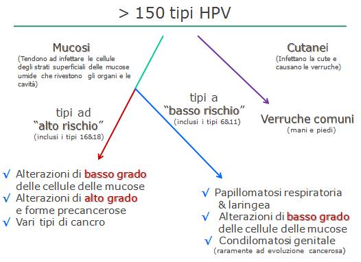 papilloma virus rischio alto