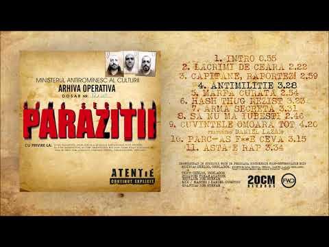 Parazitii – Mambo nr. 9 (versuri) | Versuri & Subtitrari