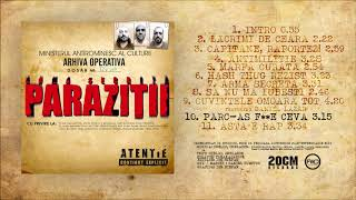 Paraziții - Primii 10 Ani Vol.2 download mp3 album