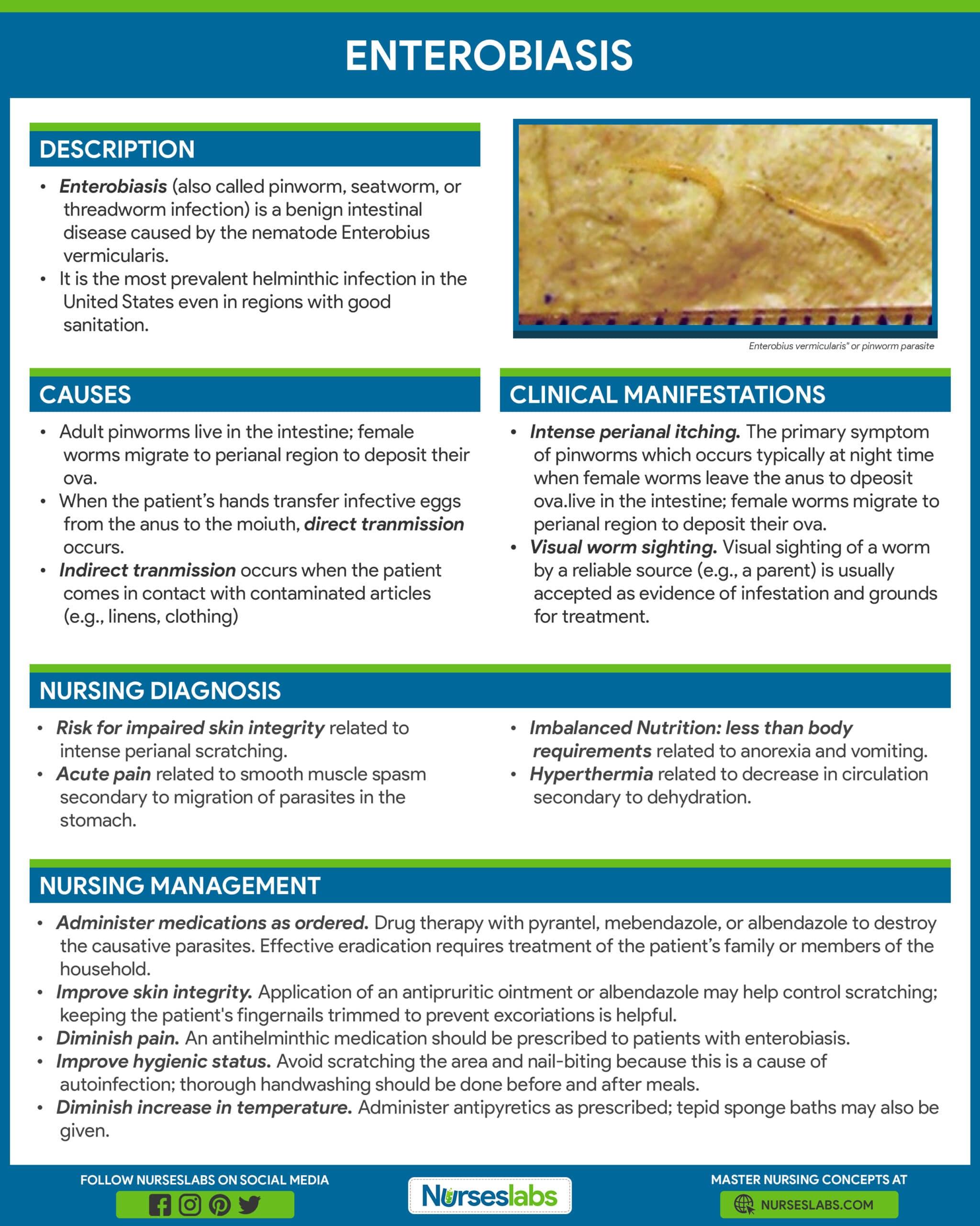 enterobius vermicularis treatment and prevention