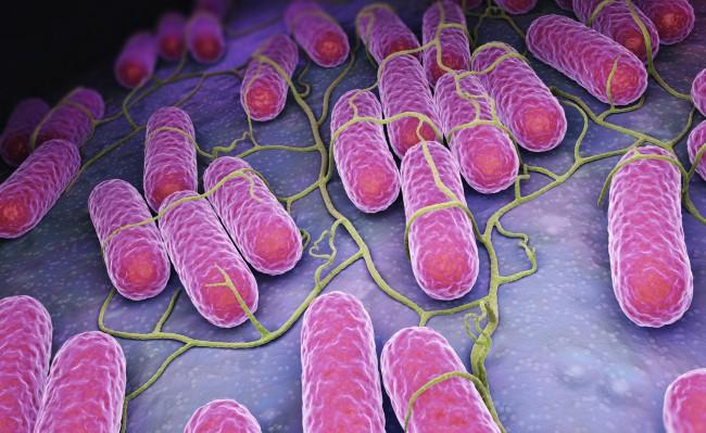 bacterii nefolositoare wart on my foot wont go away
