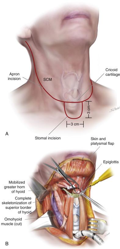 Imaging in Otolaryngology: Richard K. Gurgel · | Books Express