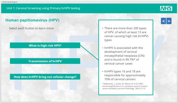 test papillomavirus nhs