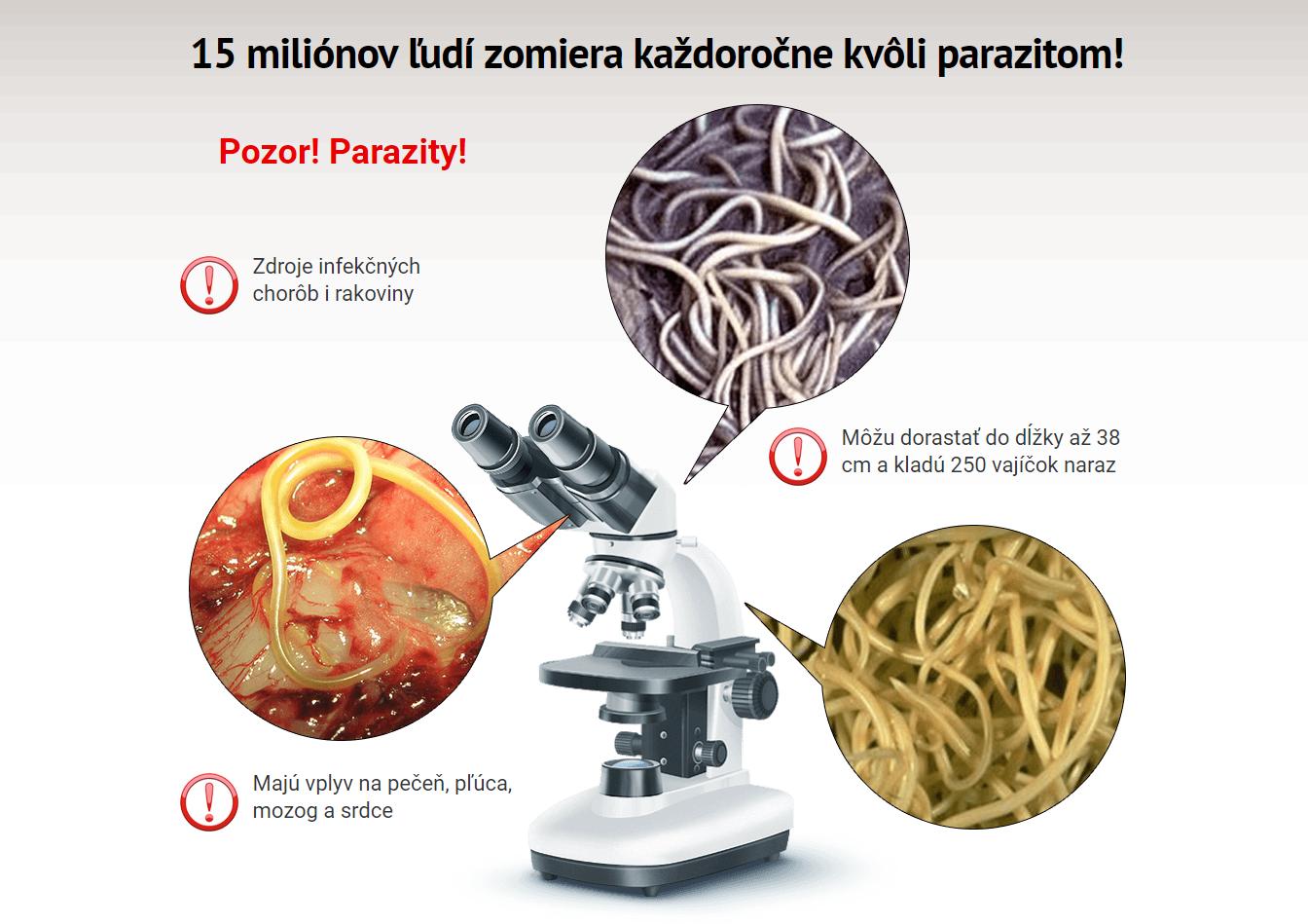 test na parazity v tele