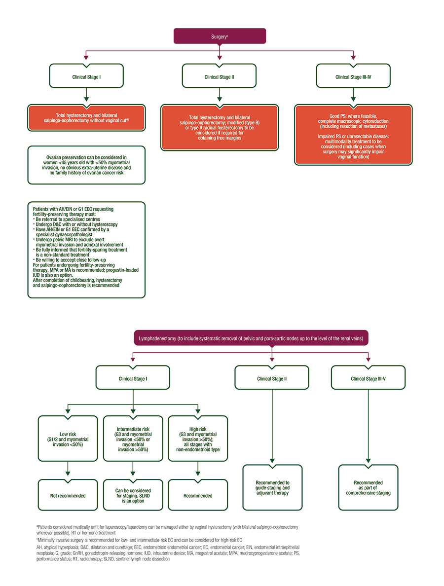 Cancerul de endometru (uterin)   ghise-ioan.ro