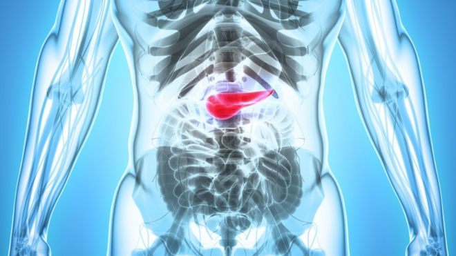 picaturi pentru paraziti intestinali el papiloma humano produce cancer de garganta
