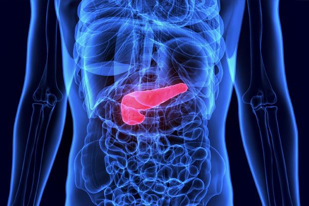 regim alimentar dupa detoxifiere