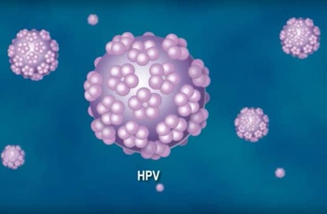 vaccin papillomavirus garcon