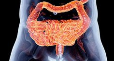 testicular cancer vs prostate