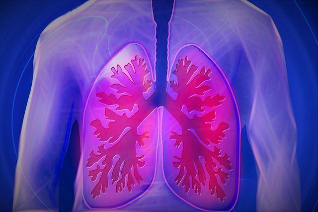 Detoxifierea plamanilor cu o dieta echilibrata