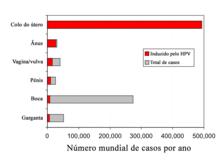 papiloma humano genotipo 66 human papillomavirus cause miscarriage