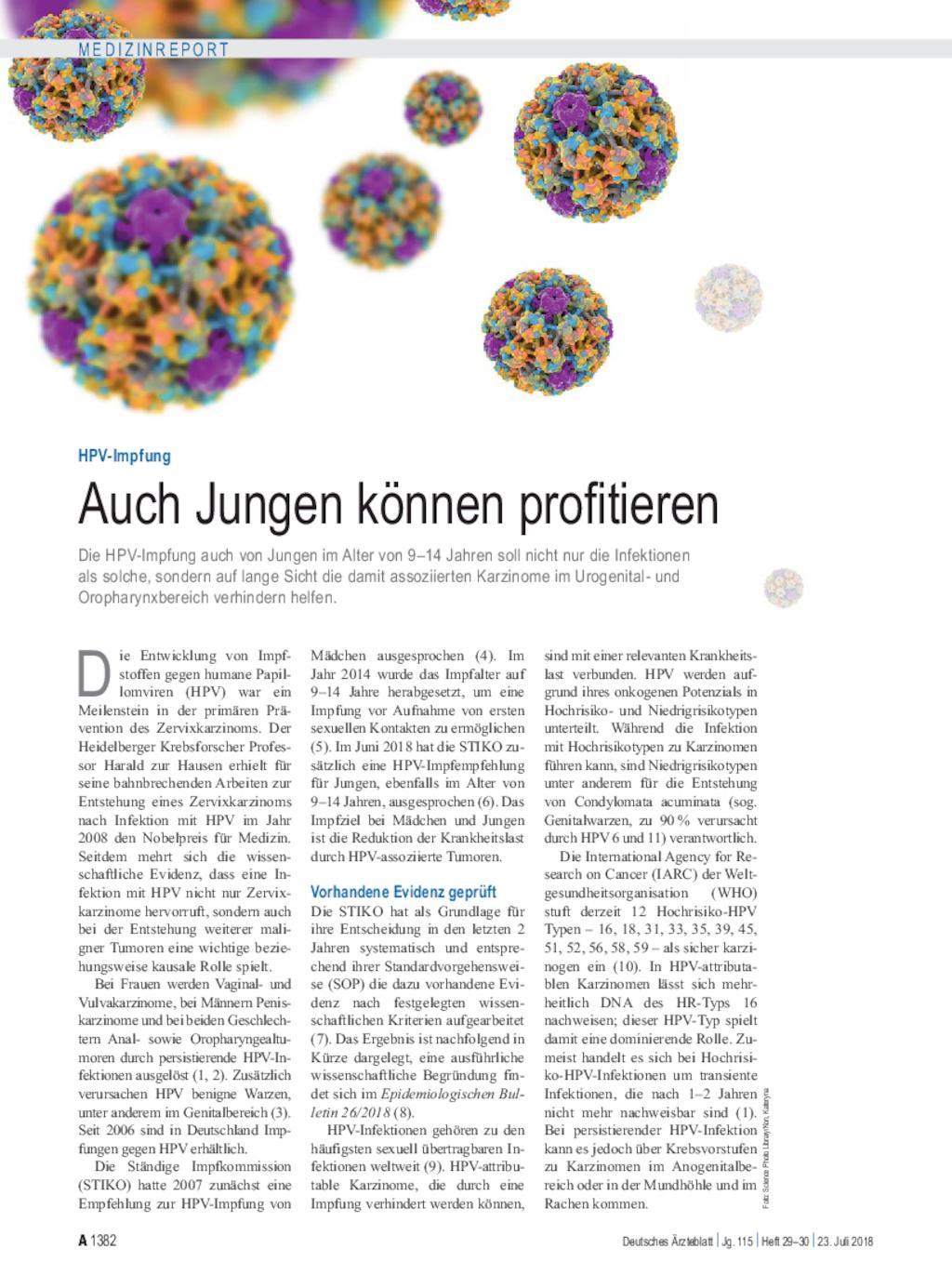 HPV-IMPFUNG - Definiția și sinonimele HPV-Impfung în dicționarul Germană