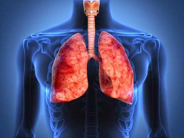 detoxifiere de nicotina cancer de prostata rastreamento