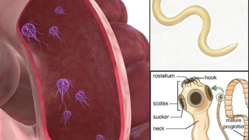 paraziti lamblia simptome