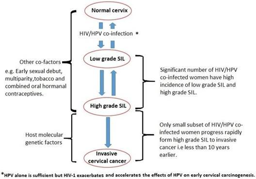 hiv hpv cervical cancer pengertian papiloma adalah