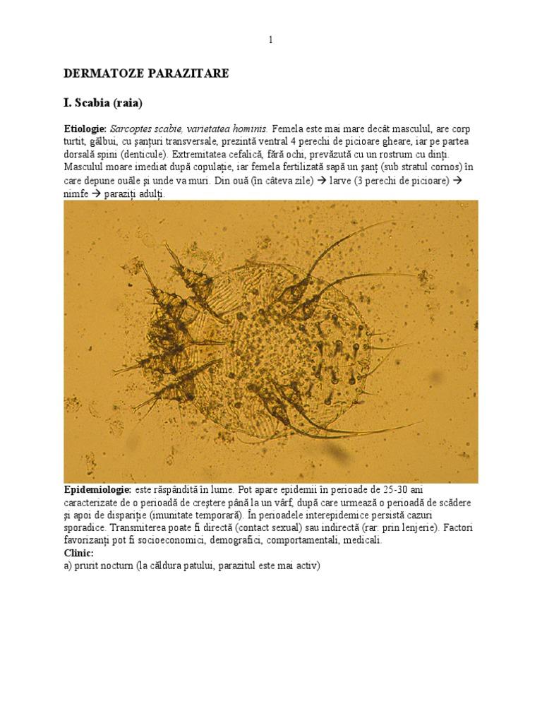 virus hpv tem cura tratamento