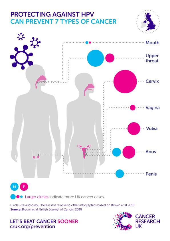 genital hpv cause cancer cancerul testicular