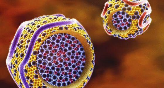 cancer que es bueno ?como es el virus del papiloma humano en la mujer sintomas
