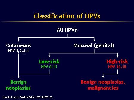 virus del papiloma humano y el condon