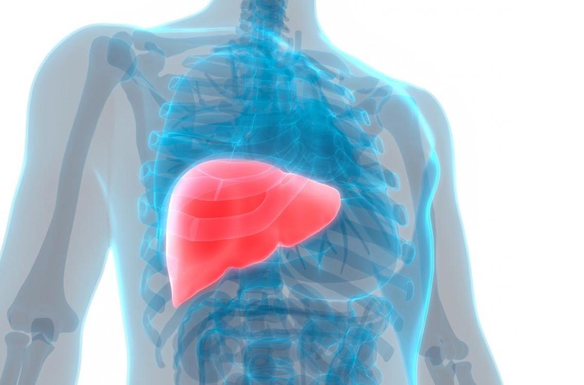cancer colon foie metastase papilloma virus man