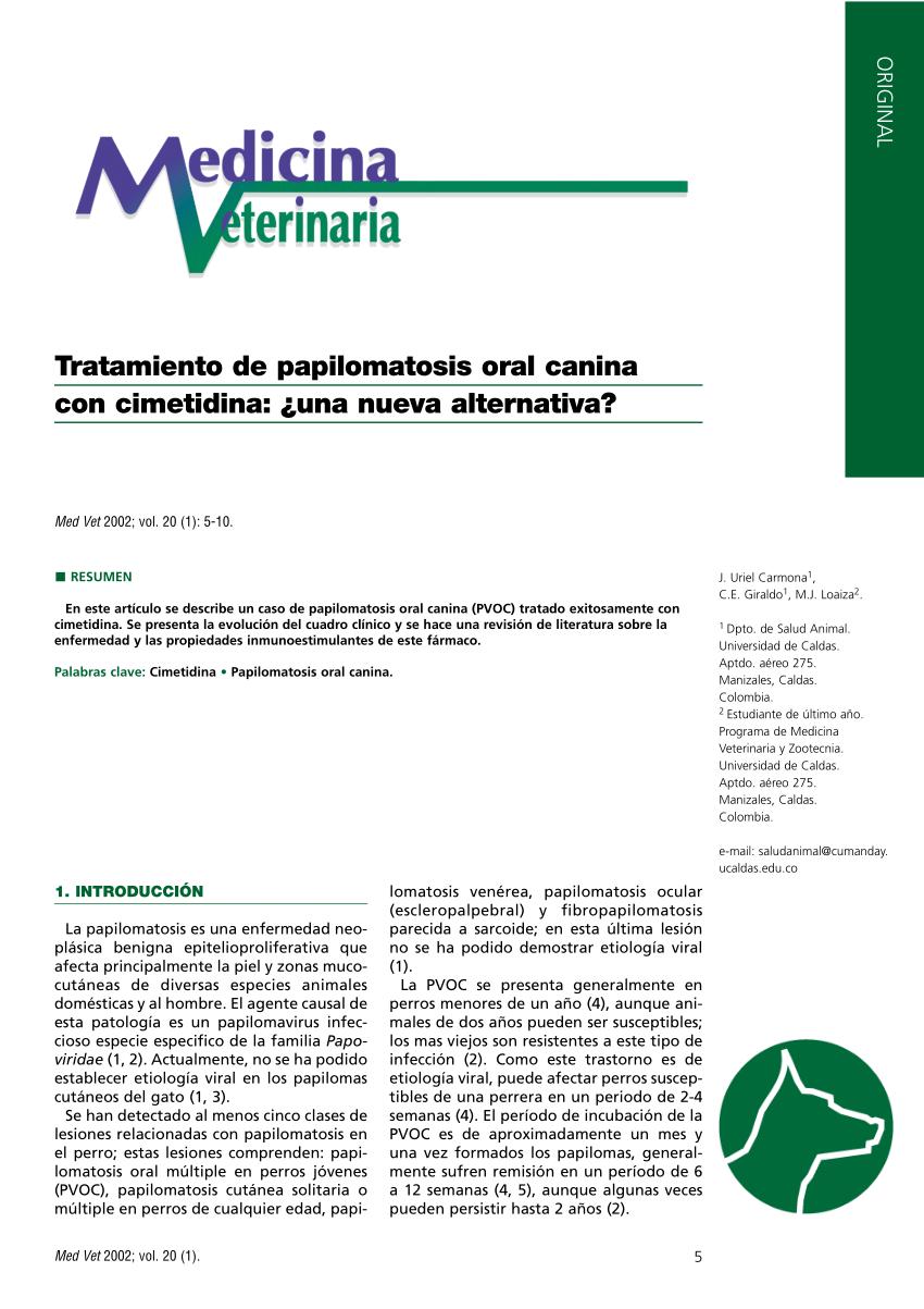papilomatosis perros tratamiento bladder papilloma histology