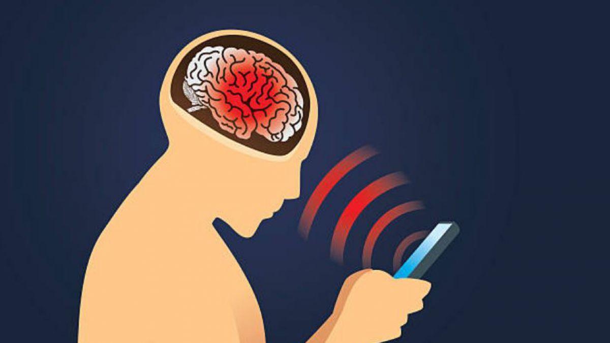 cancer cerebral por uso de celulares