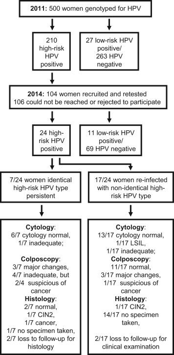 Teste screening cancer col uterin - testul Papanicolau si genotiparea HPV