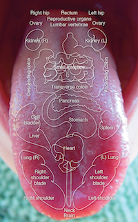 toxine pancreas