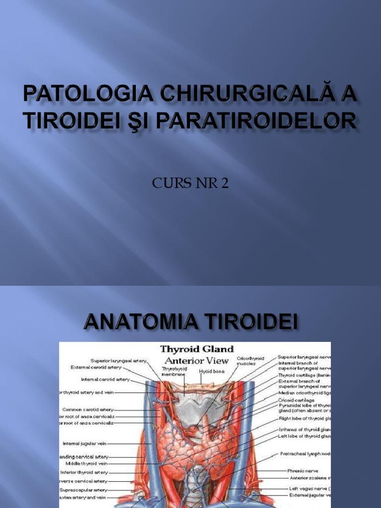 papillomas causes