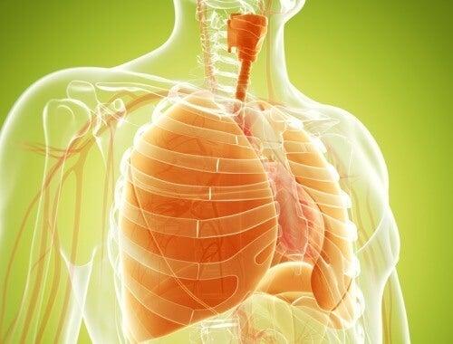 Suplimente pentru detoxifierea plămânilor