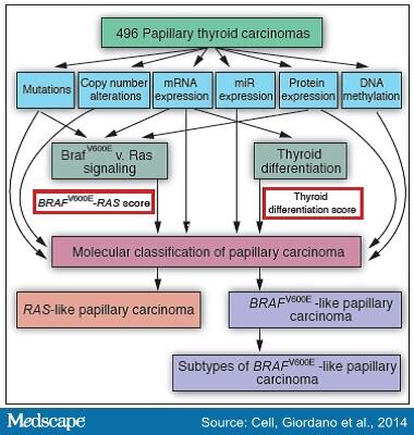 Mutaţia BRAF VE în tumori | Synevo