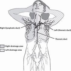 cancer limfatic dex