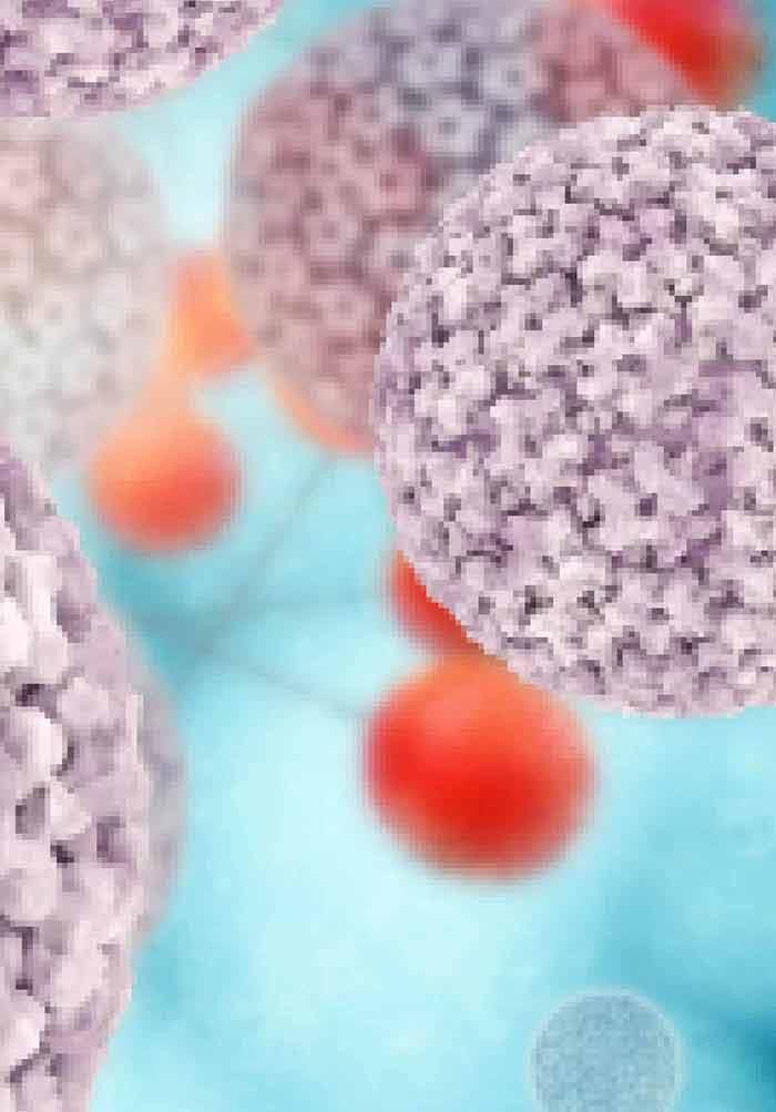 human papillomavirus bench to bedside