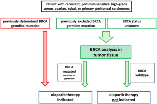 cancer ovarian treatment