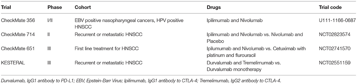 hpv positive head and neck cancer and immunotherapy