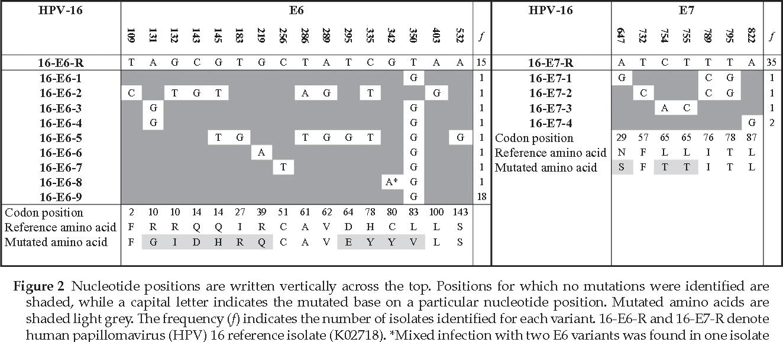 variants of human papillomavirus type 16