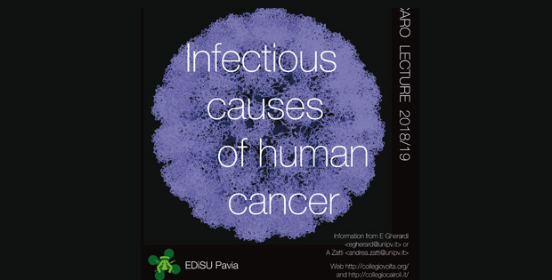 vaccino papilloma virus pavia