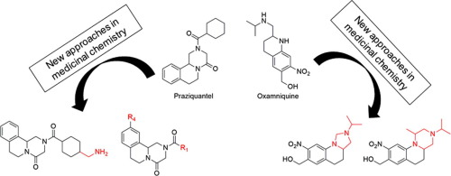 anthelmintic drugs medicinal chemistry protozoar giardia