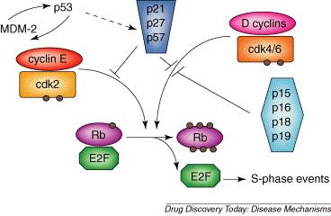 cancer cauze genetice carcinom papilar tiroidian incapsulat